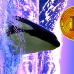 whale ethereum bitcoin